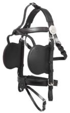 Bridles, Blinds and Reins